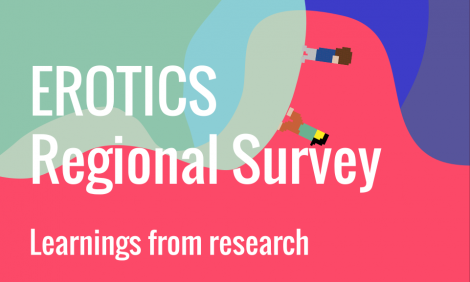 EROTICS regional survey - Learnings from research