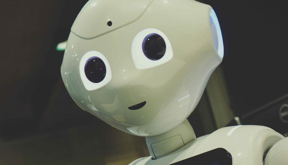 Image description: The curious face of a robot looking back