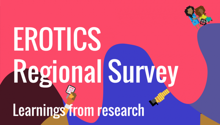 EROTICS regional survey Learnings from research